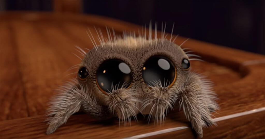 Εάν φοβάστε τις αράχνες αυτή η αξιολάτρευτη ύπαρξη θα σας κάνει να αναθεωρήσετε