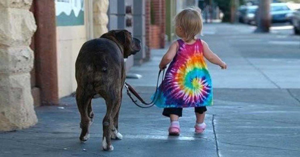 23 φωτογραφίες που αποδεικνύουν ότι τα σκυλιά είναι οι καλύτερες νταντάδες!