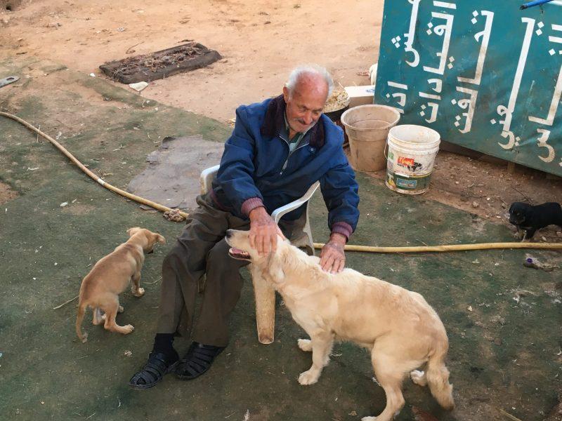 Λίβανος: Ένας ηλικιωμένος μαζεύει και φροντίζει τα ζώα που εγκαταλείπουν πολλοί αυτόν τον καιρό