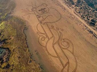 Αυστραλία: Ένα γιγάντιο κοάλα στην άμμο αφιερωμένο σε εκείνα που κάηκαν