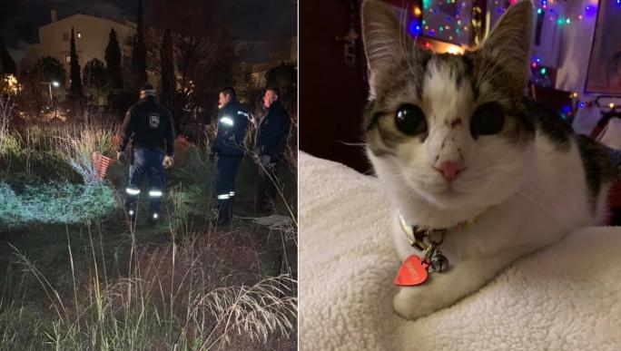 Μαρούσι Αττικής: Πυροσβέστης έβαλε σε κίνδυνο τη ζωή του για να σώσει γάτα που παγιδεύτηκε σε βαθύ πηγάδι