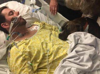 H σπαρακτική στιγμή που σκύλος αποχαιρετά στο νοσοκομείο το ετοιμοθάνατο αφεντικό του