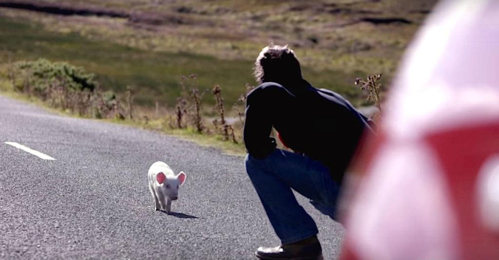 Ένας ταχυδρόμος βλέπει ένα μικροσκοπικό γουρουνάκι στη μέση του δρόμου… Δείτε τώρα τι θα κάνει με το που λυγίσει τα γόνατά του!