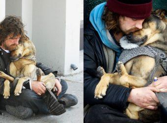 16 Πιστά Σκυλιά που στάθηκαν δίπλα στους Ιδιοκτήτες τους ακόμη και στην πιο δύσκολη στιγμή.