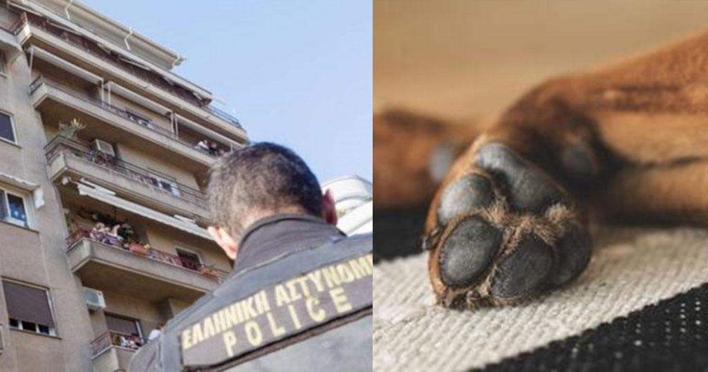 Κέρκυρα: Γυναίκα πήγε επίσκεψη και σκότωσε τον σκύλο του σπιτιού – Πρόστιμο 30.000 ευρώ