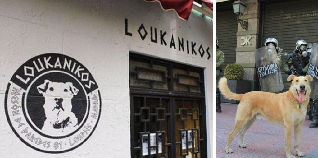 Ο σκύλος – επαναστάτης «Λουκάνικος» έχει δώσει το όνομά του σε γνωστή μπυραρία στην Ισπανία