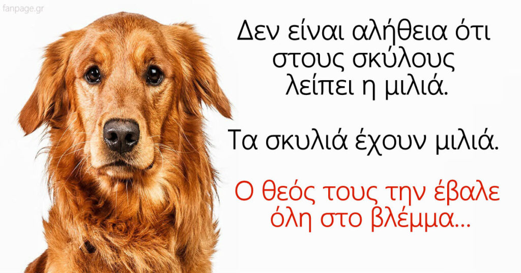 Δεν είναι αλήθεια ότι στους σκύλους λείπει η μιλιά. Τα σκυλιά έχουν μιλιά. Ο θεός τους την έβαλε όλη στο βλέμμα…