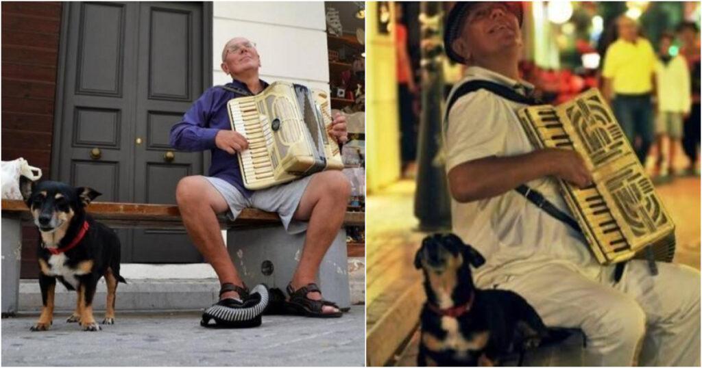 Πάτρα: «Ξεψύχησε» από την θλίψη του το σκυλάκι που έχασε τον αγαπημένο ιδιοκτήτη του που έπαιζε ακορντεόν στο δρόμο