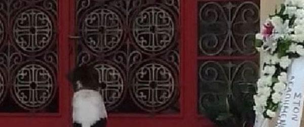 Φωτό-Video: Σκυλάκος στη Φθιώτιδα πήγε στην κηδεία του αφεντικού του και δεν έφευγε