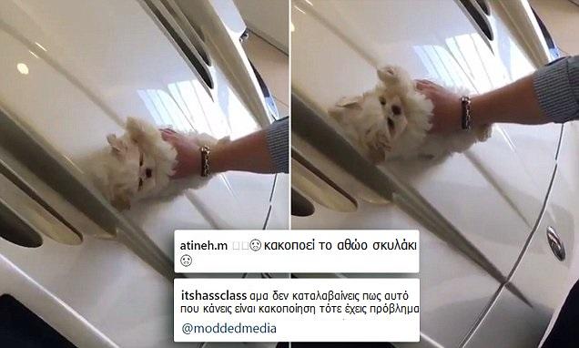 ΑΠΑΡΑΔΕΚΤΟΣ: Άρπαξε το Κουτάβι και άρχισε να Γυαλίζει την 500.000€ Μαζεράτι του σε LIVE μετάδοση. Του αξίζει η Χειρότερη Τιμωρία!