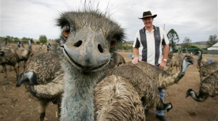 40 από τις πιο αστείες σέλφι με ζώα που έχουν καταγραφεί
