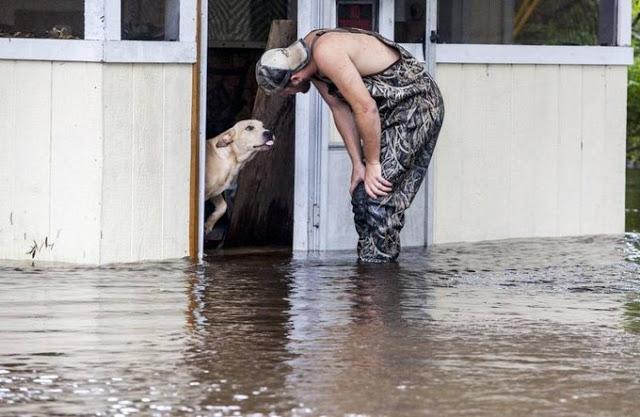 Σώζει ένα εγκαταλελειμμένο σκυλί κατά τη διάρκεια μιας πλημμύρας: μια ξεχωριστή φιλία γεννιέται από τη συνάντηση