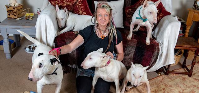 Ζήτησε από τη σύζυγο του να επιλέξει ανάμεσα στα σκυλιά που διέσωσε και αυτόν