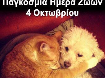4 Οκτωβρίου – Παγκόσμια ημέρα των ζώων – πορεία στο κέντρο της Αθήνας