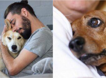 Ένας Σκύλος σε Μαθαίνει ν' αγαπάς και αυτό δεν μπορεί να το Αμφισβητήσει Κανένας!