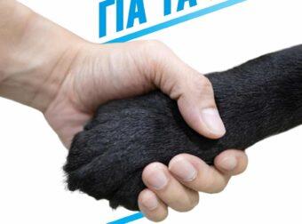 Σαράντα τρεις προσωπικότητες προσκαλούν στο Α' Ιδρυτικό Συνέδριο του Κόμματος για τα Ζώα