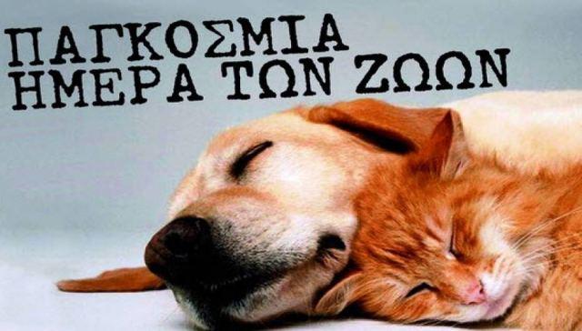 Παγκόσμια Ημέρα των Ζώων: «Οι ήρωες υιοθετούν»