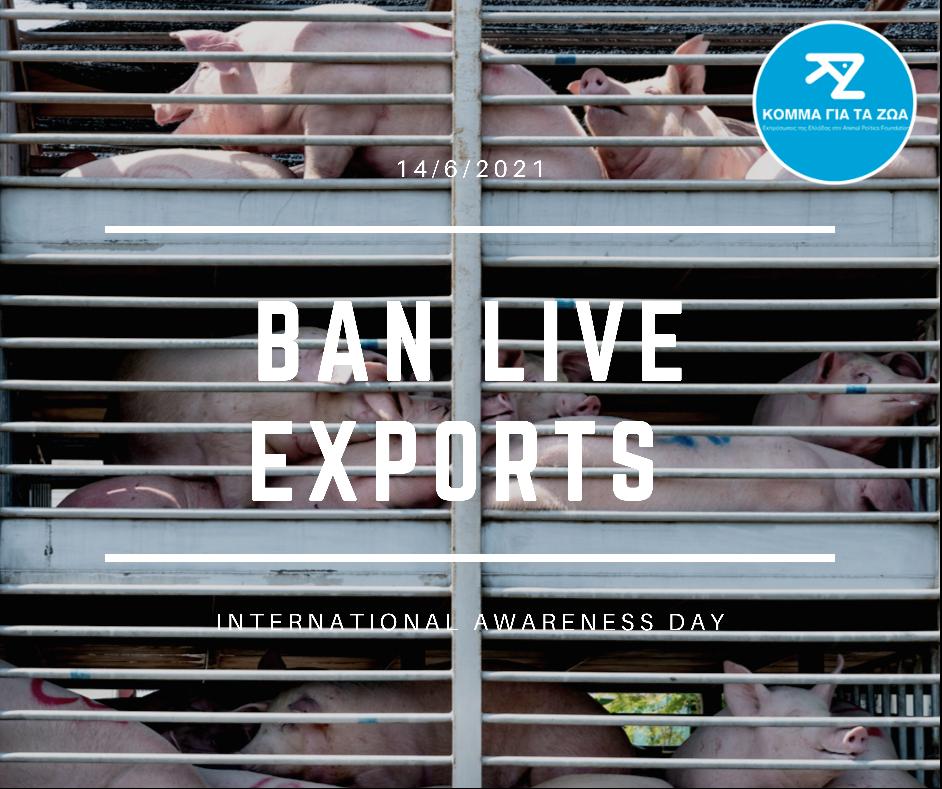 Κόμμα για τα Ζώα για την 14η Ιουνίου: Μήνυμα ευαισθητοποίησης Κατά της Μεταφοράς Ζώντων Ζώων
